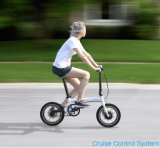 大きい力の高速脂肪質のタイヤの電気Foldable自転車