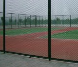 Покрынная PVC гальванизированная загородка звена цепи провода для полей бейсбола Poles