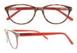 Het populaire Optische Frame van de Acetaat van het Oogglas van de Manier van Eyewear van het Ontwerp Recentste