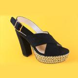 Le donne sexy delle signore hanno tallonato i sandali dei cunei della scarpa di tela del nero del vestito dalle pompe