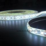 최고 밝은 5m 2835 백색 유연한 LED 지구 12V