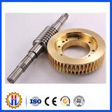 Chinesischer Hersteller-Stahl/MessingWECHSELSTROMMOTOR-Endlosschrauben-Gang und Endlosschrauben-Rad
