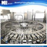 中国の工場自動満ちるシーリング機械