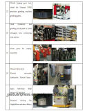 H 프레임 단 하나 불안정한 기계적인 압박 Ompi 이탈리아 건조한 클러치, 대만 Teco 모터, 일본 NTN/NSK 방위를 가진 160 톤