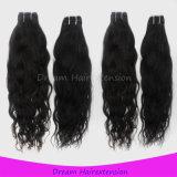 Garantiertes hochwertiges Jungfrau-Menschenhaar-natürliches Wellen-Brasilianer-Haar des Grad-8A