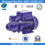Tianyi Quality 220-Volt Water Pump