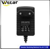 12W AC/DC Adapter mit Mikrofon/Monitor (WZX-365)
