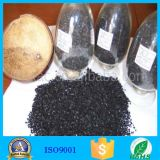 Kokosnuss-Shell-Material und betätigter Holzkohle-Typ Holzkohle