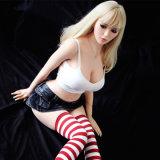 Juguete bastante &Fashionable del sexo con la muñeca japonesa del sexo de la muchacha de la cara hermosa (los 165cm)