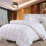 高水準デザイン寝室のキルト(WSQ-2016015)
