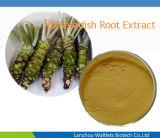 Extracto verde natural de la raíz de rábano picante del 100%/Athomin/polvo de la raíz de rábano picante
