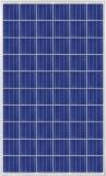 Panneau polycristallin de pile solaire du prix concurrentiel Csun-260W picovolte