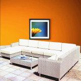 Meubles extérieurs réglés de jardin de meubles de sofa de rotin de PE