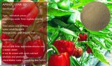 Organisches Puder der Aminosäure-50 für die Landwirtschaft