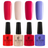 Gel Polish, Gel Nail Polish 떨어져 Ibn Best Seller Organic High Quality Soak