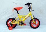 Bicicleta bonita das crianças das meninas dos bens do ponto do ano