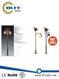 Luz solar caliente Blty-Sgl-301 del jardín de la venta los 3m