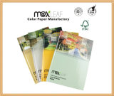 A5 - papeterie de carnet de notes à spirale de 60 feuilles pour le carnet fait sur commande de fournisseur d'écoles