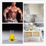 Heißes Selling Steroid Powder für FAT Loss Testosterone Decanoate
