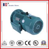 감응작용 고전압 (380V 50Hz)를 가진 전자기 AC 브레이크 모터