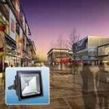 lampada impermeabile esterna dell'inondazione Light/LED di 50W IP65 RGB LED