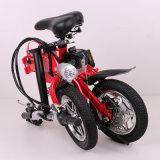 12 Zoll Partable, das elektrisches Fahrrad-Fahrrad mit entfernbarer Batterie faltet