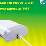 세륨은 1200mm 세 배 증거 LED 선형 빛 40watt IP66를 승인했다
