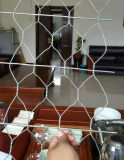 Fil de /Weld Mesh/Gi de treillis métallique/frontière de sécurité maillon de chaîne/maille hexagonale