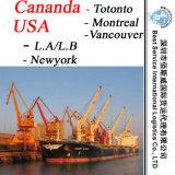 대양 출하 운송업자 Cananda (토론토, 몬트리올, 뱅쿠버); 미국 (L.A/L.B, Newyork)