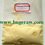 Pó esteróide anabólico Trenbolone Enanthate Tren Enanthate da pureza elevada de 99.7%
