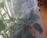 Serre die het AntiInsect van de Vlieg Netto voor Moestuinen opleveren