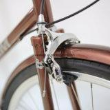 2017의 신제품 고품질 도시 자전거 (CTB8)