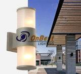 옥외 사용을%s 알루미늄 2X10W LED 벽 점화