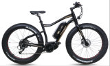 Fat Tire Bicicleta eléctrica con MID-Drive Motor (TDE10Z-3)