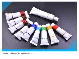 di 10*10ml vernice acrilica non Totic in tubo di alluminio