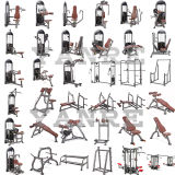 Máquina popular de la fuerza del equipo de la aptitud de la gimnasia de la aducción apretada
