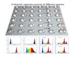 El espectro completo LED crece el módulo ligero para la cultura del tejido