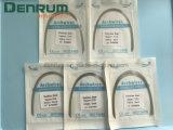 Alambres ortodónticos dentales del arco de Prefomed Ss de la alta calidad de Denrum