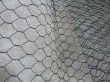 La maglia del pollame galvanizzata elettrotipia allora ricoperta PVC/Caldo-Ha tuffato la maglia galvanizzata del pollo