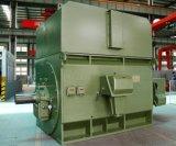 Motore elettrico ad alta tensione standard 900kw-2-10kv di IEC