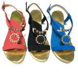 Sandal Shoes新しい服の女性