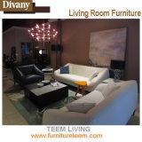 Lebende Luxuxlehnsessel-Sofa-Stühle ausgießen