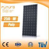 Panneau solaire 250W polycristallin de prix usine avec les cellules solaires du monde