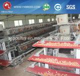 De zilveren Kooien van het Gevogelte van het Landbouwbedrijf van de Kip van de Ster Automatische
