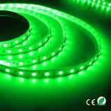 Weißes Innen5050 Licht 5m des LED-Flexstreifen-12V 24V