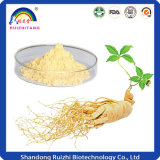 Chinesischer Kraut-Ginseng-Auszug mit 80% Panaxoside