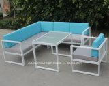 H-SGS中国の屋外の庭の円形のベッド