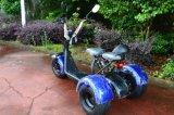 3 عجلات درّاجة ناريّة كهربائيّة مع [1000و] محرك
