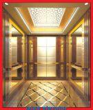 Beton-u. Ziegelstein-Passagier-Aufzug mit HaarstrichEdelstahl-Auto-Wand