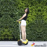 Scooter électrique de vélo de boudineuse de vent d'équilibre électrique d'individu